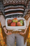 Young woman wearing knitted poncho having picnic in a forest: drinking tea and picking apples Stock Photos