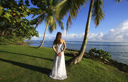 Young woman in wedding dress standing by palm tree Stock Photos