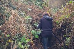 Young woman weeding garden Stock Photography