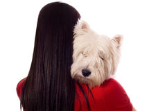 Young woman with West Highland White Terrier. (isolated on white stock photography