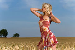 Young woman in a wheat field Royalty Free Stock Images