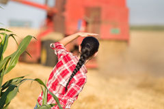 Young woman in wheat field during harvest Royalty Free Stock Photo