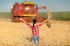 Young woman in wheat field during harvest Royalty Free Stock Photography
