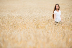 Young woman in the wheat field Stock Images