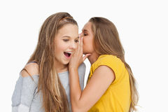 Young woman whispering to her friend Stock Images