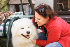 Young woman and white fluffy Samoyed dog Stock Images