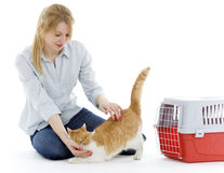 Young woman with white ore cat Stock Photos