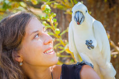 Young woman with white parrot sitting on her shoulder Stock Images