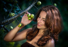 Young woman with wild apples Stock Image