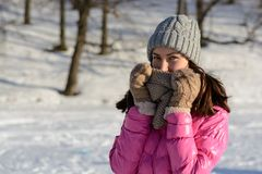 Young woman in winter clothes in the background of the forest. Brunette in pink down jacket, knitted hat, scarf and gloves on a wi stock photos