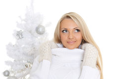 Young  woman in winter clothes. Christmas. Stock Photo