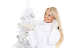 Young  woman in winter clothes. Christmas. Royalty Free Stock Image