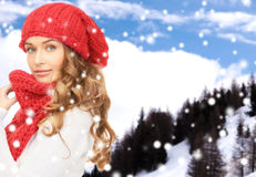 Young woman in winter clothes Stock Photography