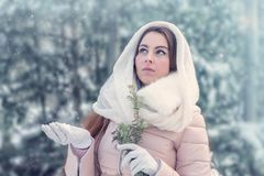 Young woman in winter forest. Beautiful young woman in winter forest Stock Photos
