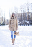 Young woman at winter Stock Photography