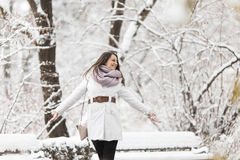 Young woman at winter Stock Images