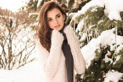 Young woman in winter park. Portrait of woman in winter park near the winter tree Royalty Free Stock Photos