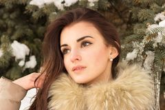 Young woman in winter park. Portrait of woman in winter park near the winter tree Royalty Free Stock Photography