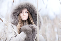 Young woman winter portrait Royalty Free Stock Images
