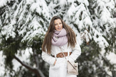 Young woman at winter Royalty Free Stock Photography