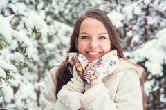 Young woman in winter Royalty Free Stock Image