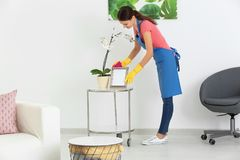 Young woman wiping dust. While cleaning flat Royalty Free Stock Photography