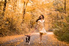 Free Young Woman With The Dog In The Park. Wind In The Hair. With Dog On A Walk In An Autumn Nature. Young Beautiful Female Royalty Free Stock Photos - 172390208