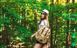 Young woman in the woods royalty free stock image