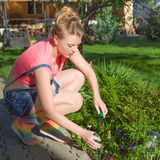 Young woman work in garden Royalty Free Stock Photos
