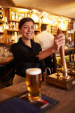 A young woman working behind a bar looking to camera royalty free stock photos