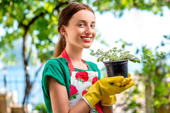 Young woman working in the garden stock images