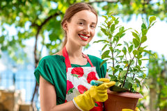 Young woman working in the garden Stock Photos