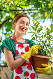 Young woman working in the garden Royalty Free Stock Image