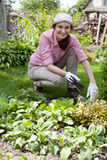 Young woman  working in the garden bed Royalty Free Stock Photos