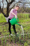 Young woman working in the garden. Stock Photography