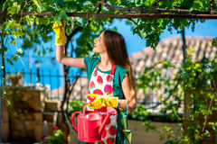 Free Young Woman Working In The Garden Royalty Free Stock Images - 55670919