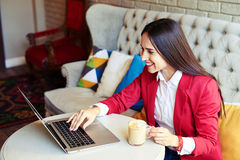 Young woman working with laptop in cafe Royalty Free Stock Photo