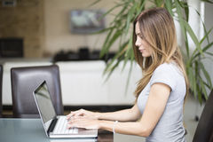 Young woman working on laptop Stock Image