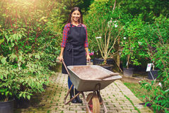 Young woman working in a nursery greenhouse. Standing on a path amongst potted plants with a wheelbarrow and spade smiling at the camera Royalty Free Stock Photography