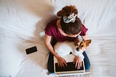 Free Young Woman Working On Laptop At Home, Sitting On The Couch, Cute Small Dog Besides. Technology And Pets Concept Stock Photo - 175723840