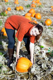 Young woman working on pumpkin field Stock Image
