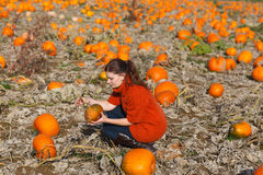 Young woman working on pumpkin field Royalty Free Stock Images