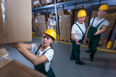 Young woman working in storehouse Stock Images