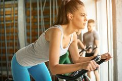 Young woman workout in gym. royalty free stock photo