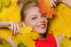 Young woman in yellow autumn maple leaves Stock Image