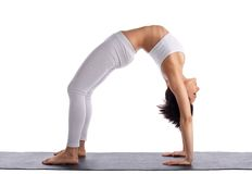 Young woman in yoga asana - bridge pose isolated Royalty Free Stock Photos
