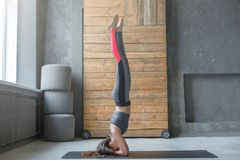 Young woman in yoga class doing head stand Royalty Free Stock Photography