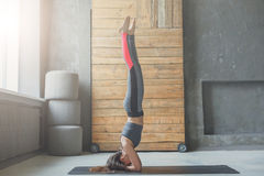 Young woman in yoga class doing head stand Royalty Free Stock Images