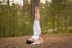 Young woman in Yoga shoulder stand in forest Stock Image