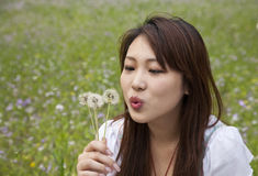 Young womanblowing dandelion Stock Image